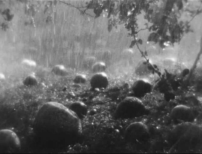 Киноклуб с Олегом Панаэтовым «Земля».